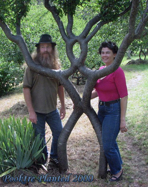 Pete, Tree person and Becky upright