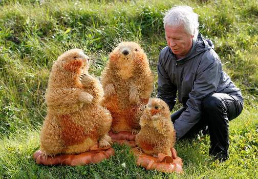 to make a family of three marmots he has spent 1,5 years and 210 000 tiny pieces of cedar