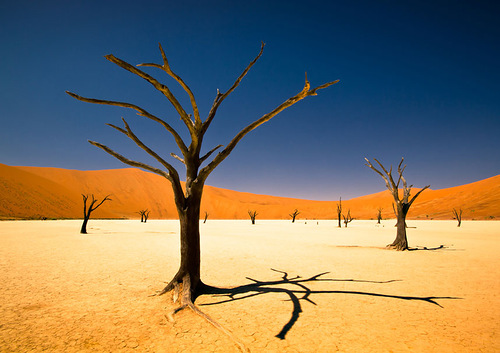 Sossusvlei by Bernard Pieterse, South Africa