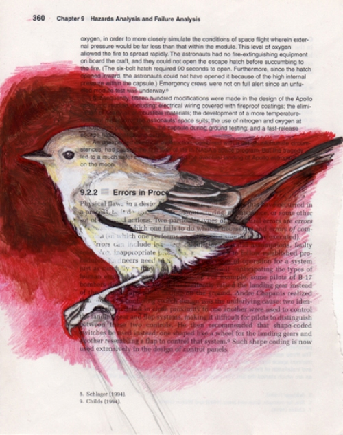 Colorful birds drawings on book pages by American artist Paula Swisher