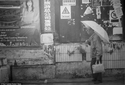 Hyperrealistic pencil drawings by Scottish artist Paul Cadden