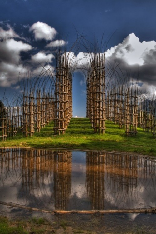 Temple of growing trees in Italy. The growing temple Vegetable Cathedral Arte Sella, project by Italian artist Giuliano Mauri