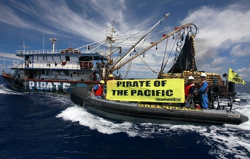 The pirate fishing vessel. Greenpeace activists chase an illegal, unregistered and unlicensed (IUU) purse seine fishing vessel on the high seas, close to the border with Indonesia's Exclusive Economic Zone (EEZ), 24 November 2011