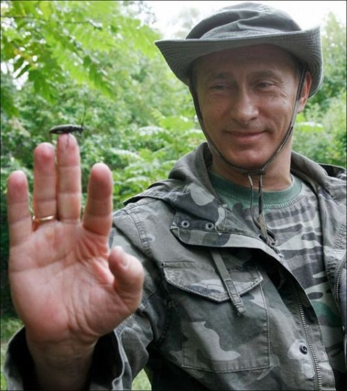 Nature lover Vladimir Putin and insect