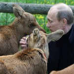 Animal protector Vladimir Putin