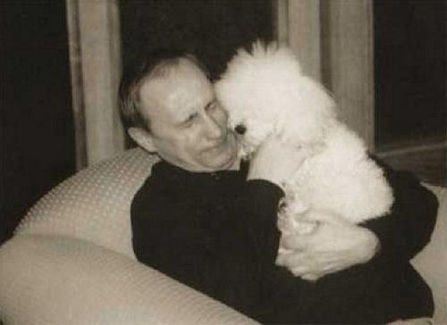 Dog lover Vladimir Putin