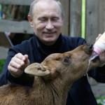 Happily feeding an animal, Vladimir Putin