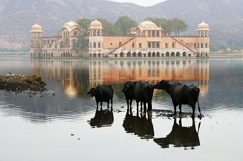 Water Palace in India