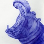 Realistic Ballpoint pen drawing by Sarah Esteje, French artist