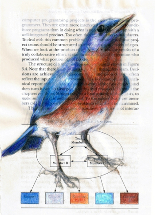 Blue lavender cyan. Colorful birds drawings on book pages by American artist Paula Swisher