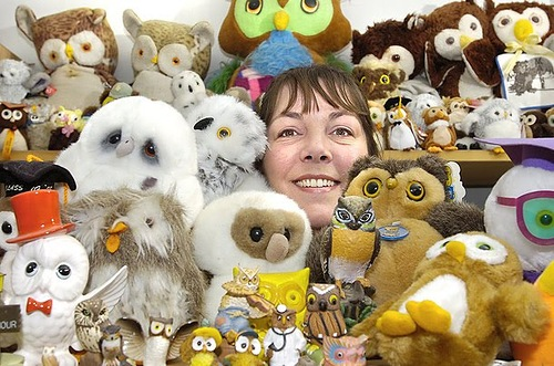 the world's largest collection of owls. Guinness records 2012 collections