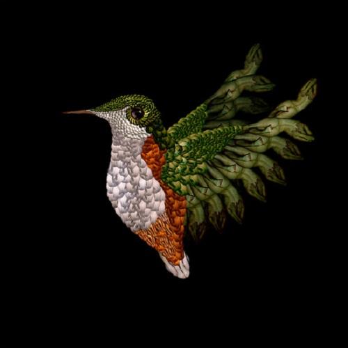 Human body humming bird by Cecelia Webber