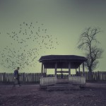 Beautiful Photoart by Caras Ionut