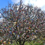 Beautiful patterns of Easter eggs. Apple tree in Eastern Germany