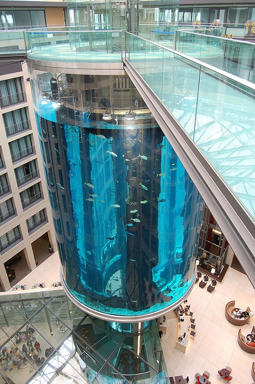 World's largest cylindrical aquarium AquaDom in Berlin