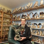 Collection of 20000 Bird Ornaments by Mr Cobbold