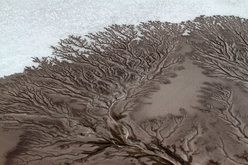 In the desert of Baja California, Mexico, there are desert rivers forming treelike figures. This is no photo manipulation or a painting but a true natural
