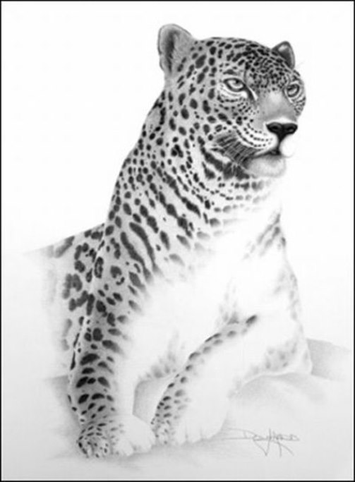 Leopard. Mouth painting by American artist Doug Landis