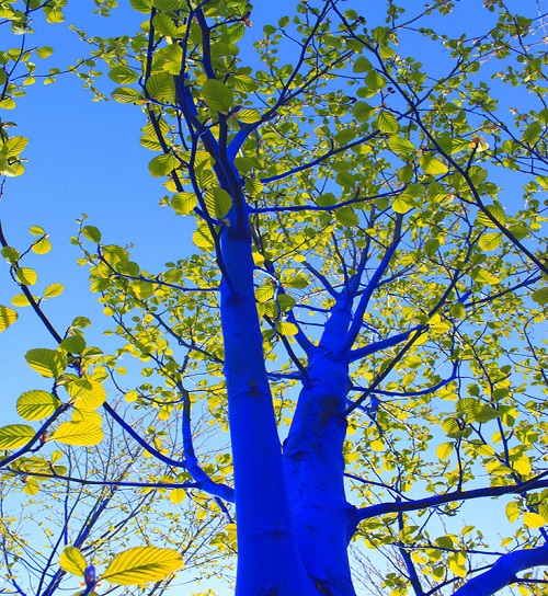 The Blue Trees installation by Egyptian artist Konstantin Dimopoulos