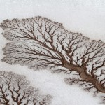 Stunning phenomenon of desert rivers
