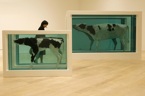 "The representative of the media looks at Damien Hirst's work ""Divided Mother and Child"""