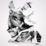 Pencil drawings by Christina Empedocles