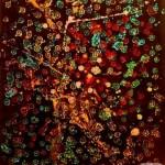 Russian artist Vadim Stolyarov