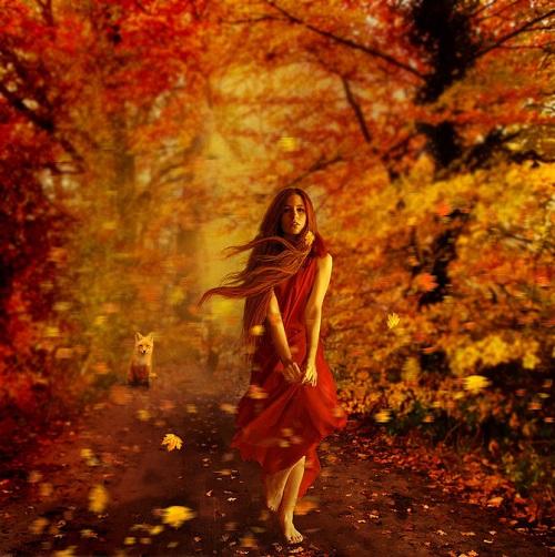 Autumn wood. Photoart by Polish photographer Barbara Florczyk