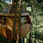 Wooden egg-shaped treehouse built by Joel Allen in Whistler forest, Canada
