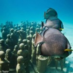 The Underwater sculpture park by English sculptor Jason de Caires Taylor