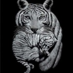 A tiger with a cub