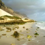 Beautiful Socotra island - the island of happiness