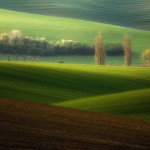 Green fields by Krzysztof Browko, Polish photographer