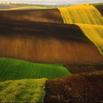 Green fields in Krzysztof Browko photography