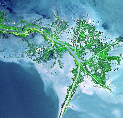 A river runs through it: a delta in Mississippi, United States, showing odd bits of vegetation escaping the water