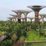 Impressive Artificial trees in Singapore