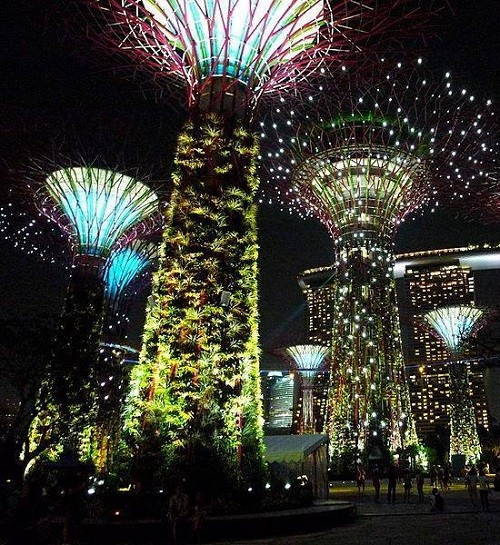 Night view of Concrete supertrees