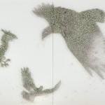 Birds. Buttons installations by Korean artist Ran Hwang