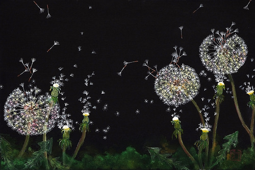 Night landscape with dandelions