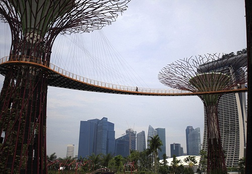 Artificial woodland in Singapore