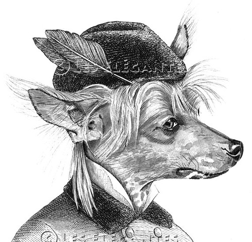 Beautiful Vintage portraits of animals by French artist LesElegantes
