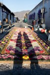 Colorful Street Carpets Alfombras
