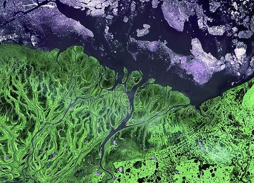 The Yukon river delta, Alaska