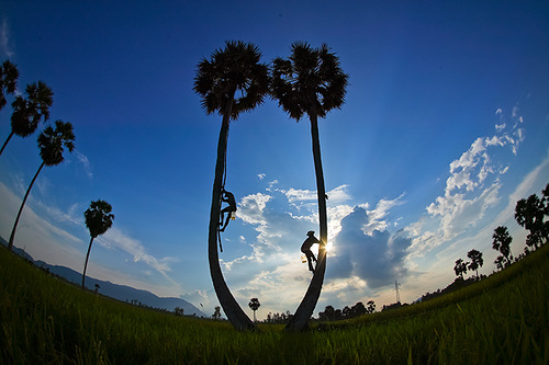 Beautiful world of Vietnamese photographer Hoang Nam