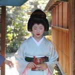 The symbol of Kyoto - Maiko, future Geisha