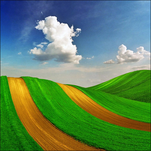 Green fields under the sky landscape. Beautiful photo art by Katarina Stefanovich, talented photographer from Belgrade, Serbia