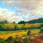 Stunning summer landscape. Beautiful photo art by Katarina Stefanovich, talented photographer from Belgrade, Serbia