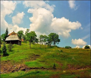 Rural landscape in July. Work by Katarina Stefanovich, talented nature photographer from Belgrade, Serbia