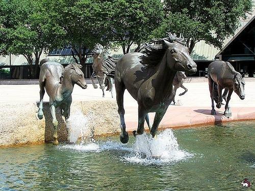 Mustangs sculpture in Texas