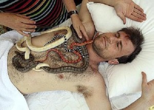 Snake therapy